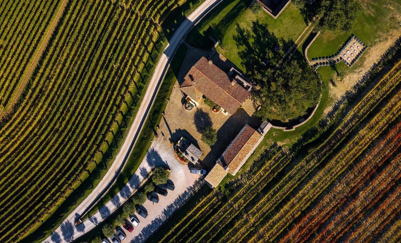 Istarska priča o uspjehu i vinu