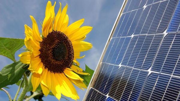 5 dejstev, ki kažejo, da za stavko v energetiki ni nobenega razloga