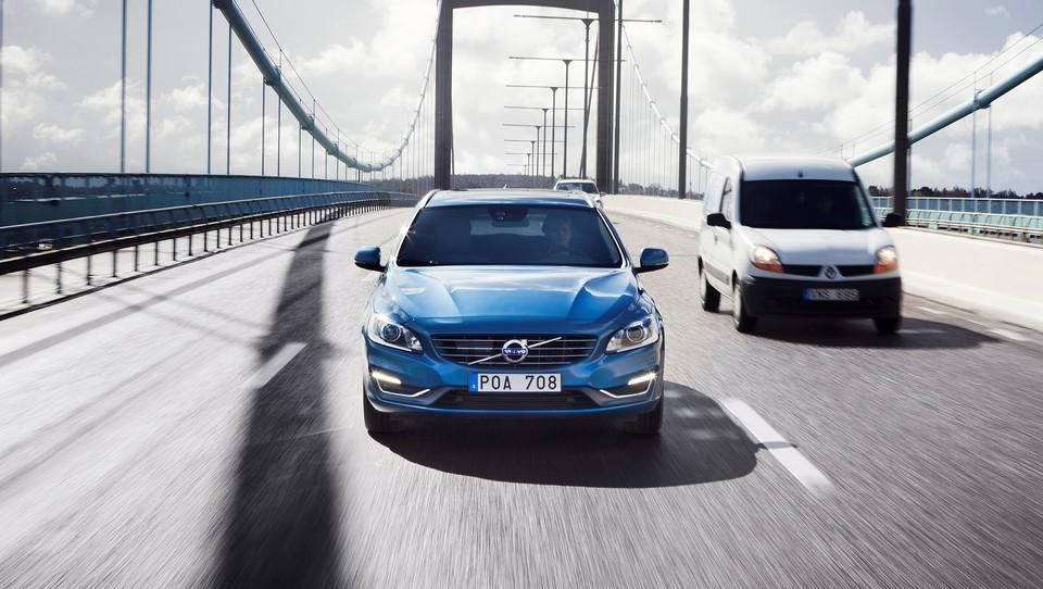 Volvovo rast poganja Kitajska