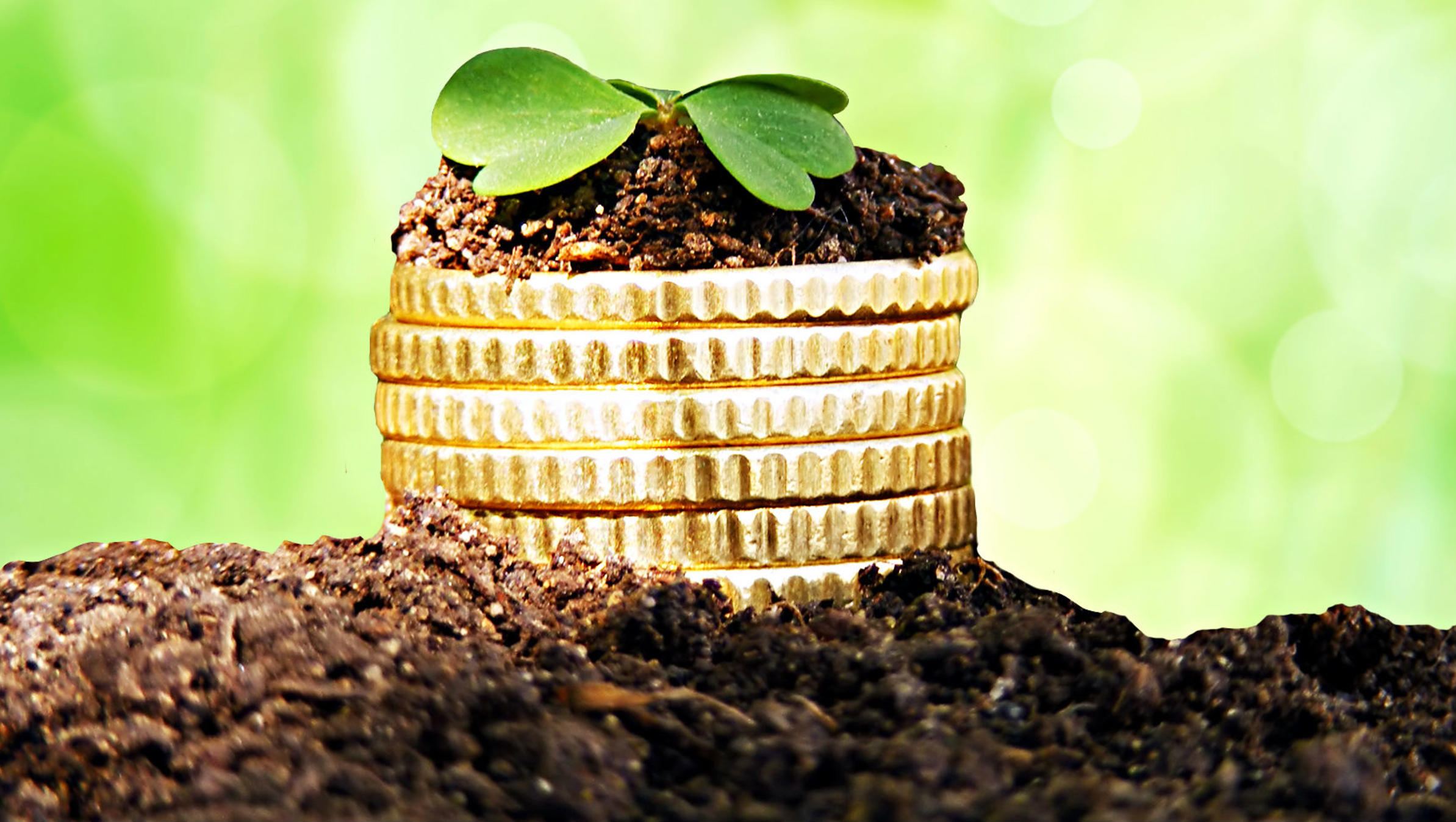 Slovenië aantrekkelijker voor investeringen: alles is samengesteld