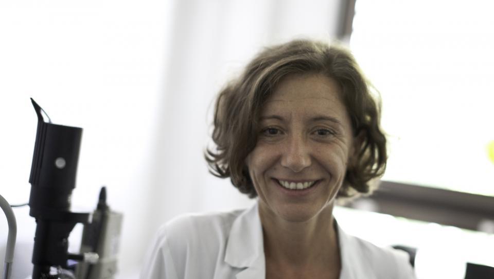 Zakaj potrebujemo register presejanja diabetične retinopatije