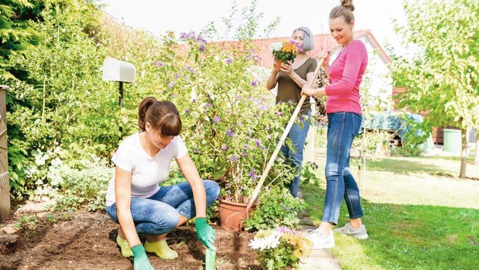 Spomladanske naložbe v vrtnarjenje, ki se obrestujejo celo leto