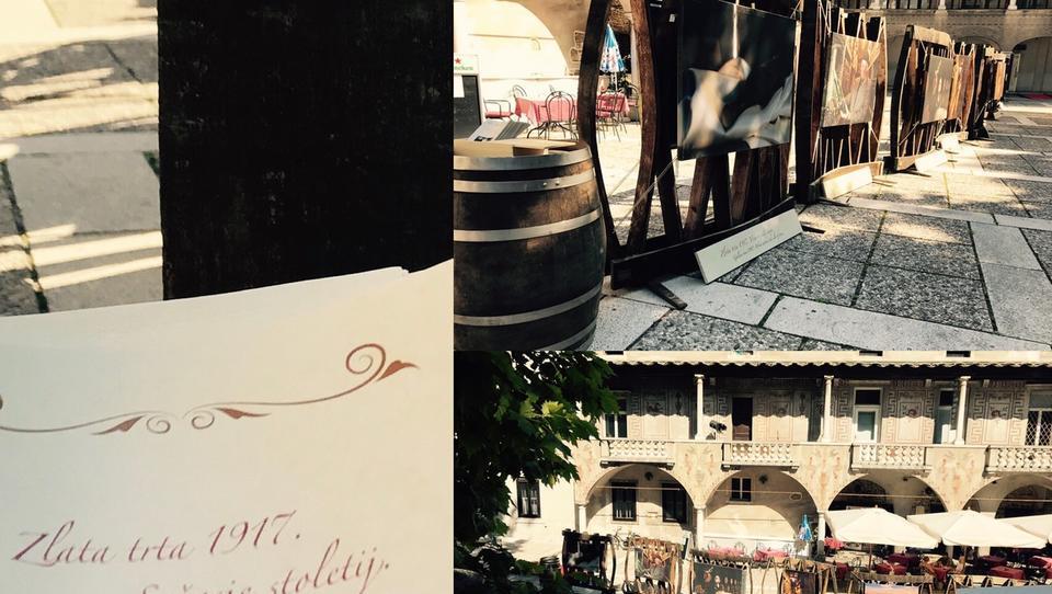 Zgodbo o Zlati trti 1917, najstarejšem slovenskem vinu, govori fotografska razstava