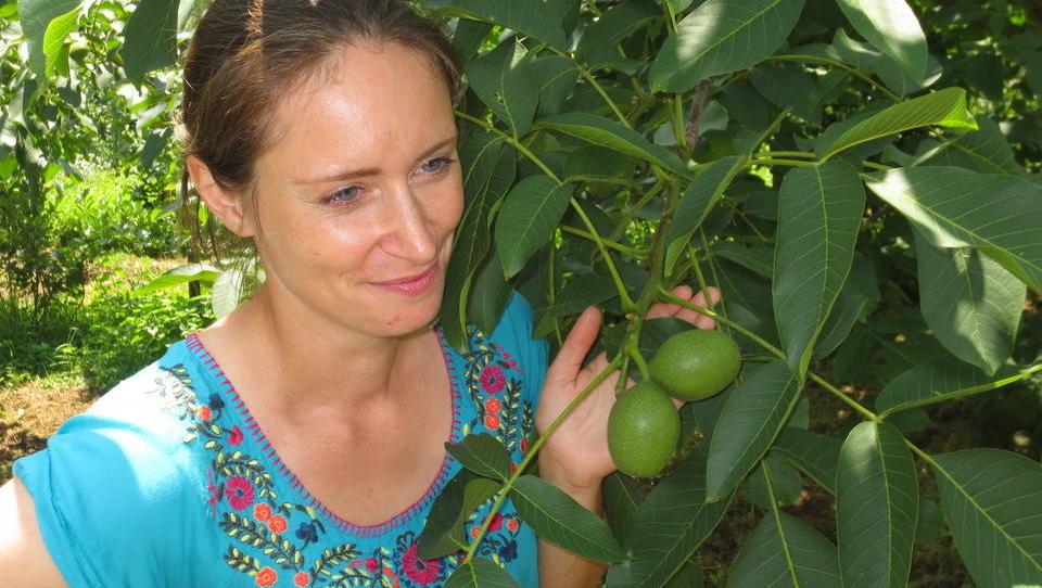 Ekološka kmetija Vodnjov uspeva s sadnimi lističi