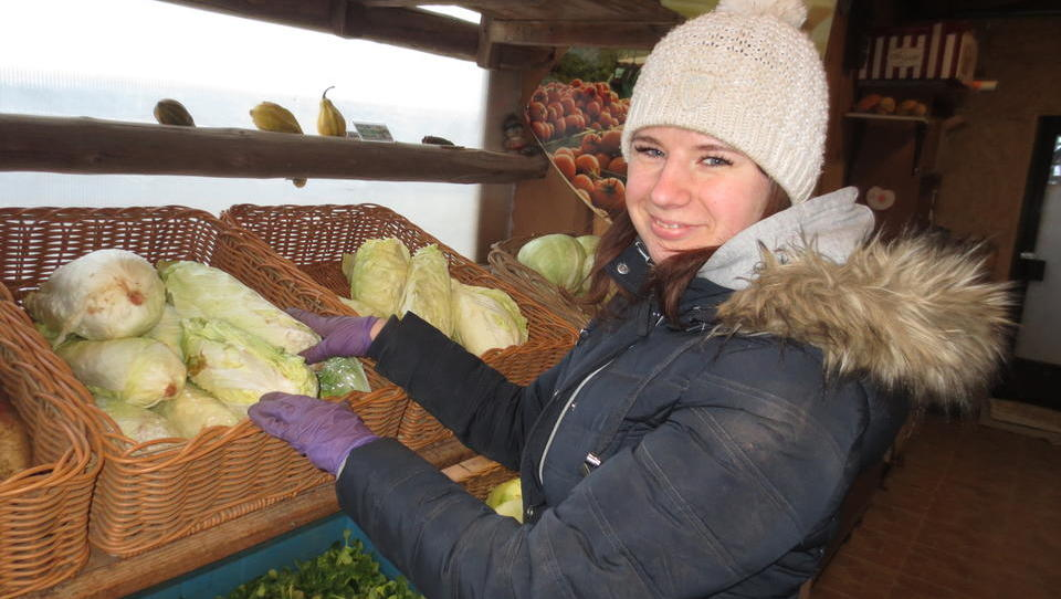 Reportaža: Kljub snegu cveti prodaja domače zelenjave z ljubljanskih kmetij