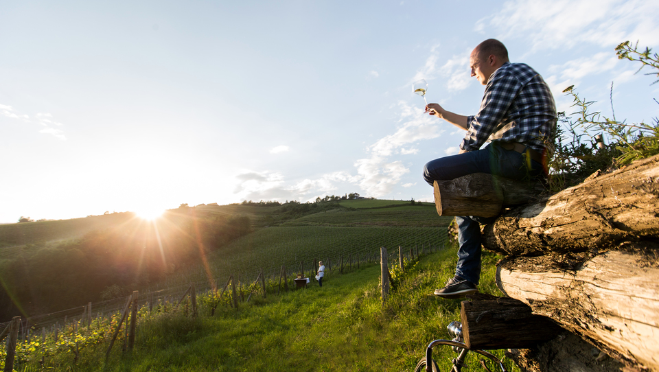 O čem sanja inovativen mlad kmet Matjaž Frešer
