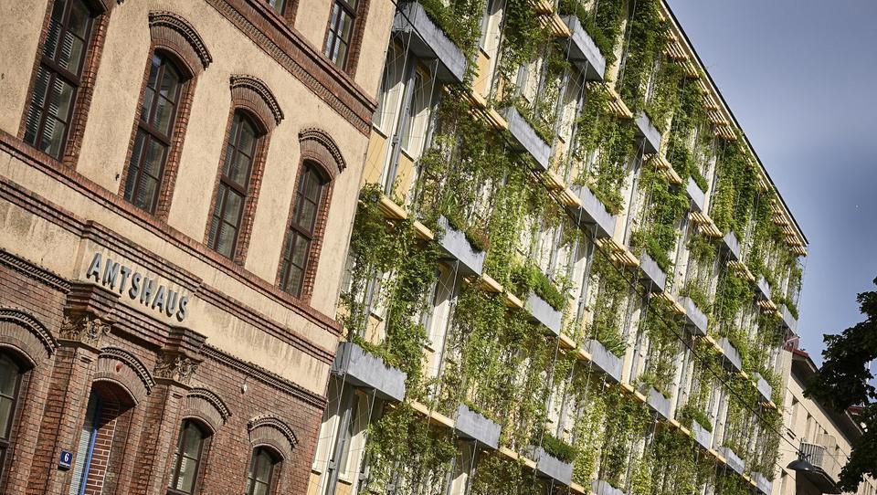 Kakšne naložbe v ohlajanje mesta pripravljajo na Dunaju