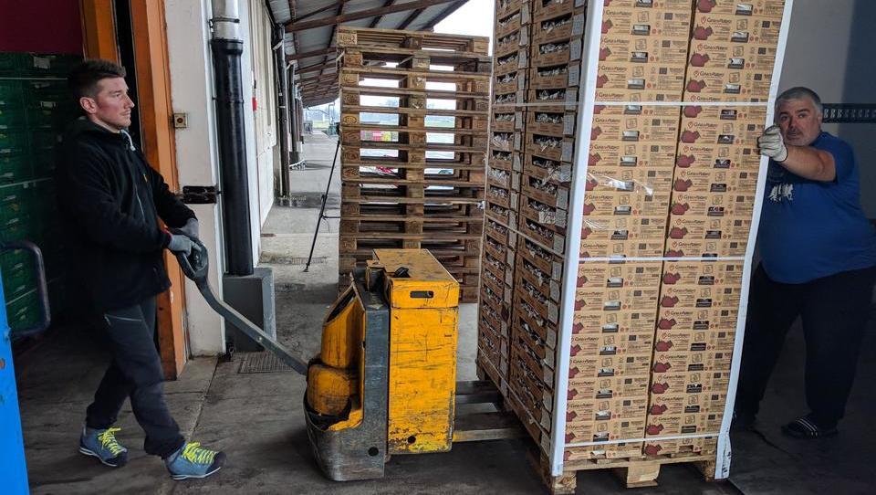 (video, foto) To je logist, ki kupi največ češenj v Sloveniji
