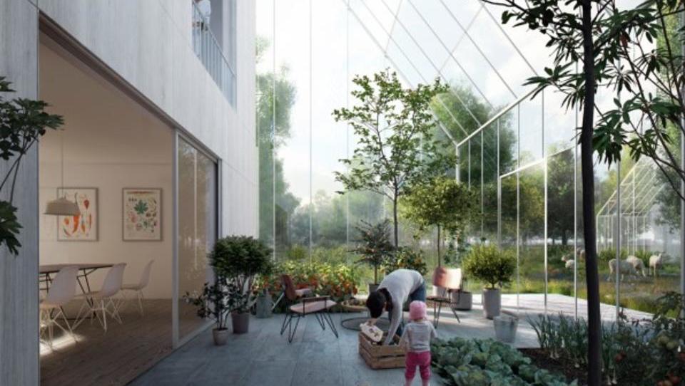 Bi živeli v pametni vasi, ki nastaja na Nizozemskem?