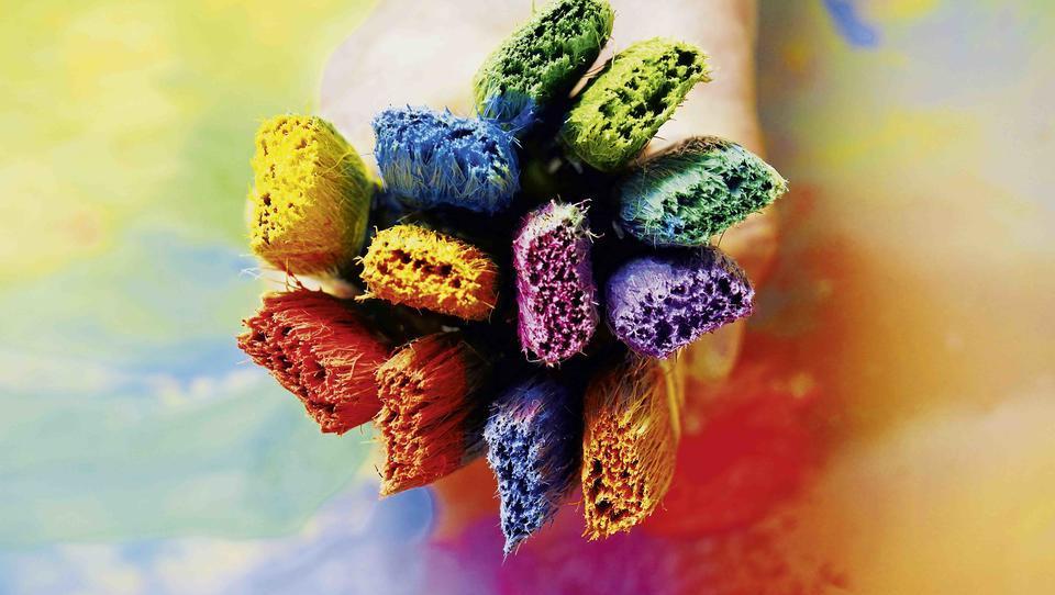 Kako ustvariti barve doma, ko zunaj prevladuje siva