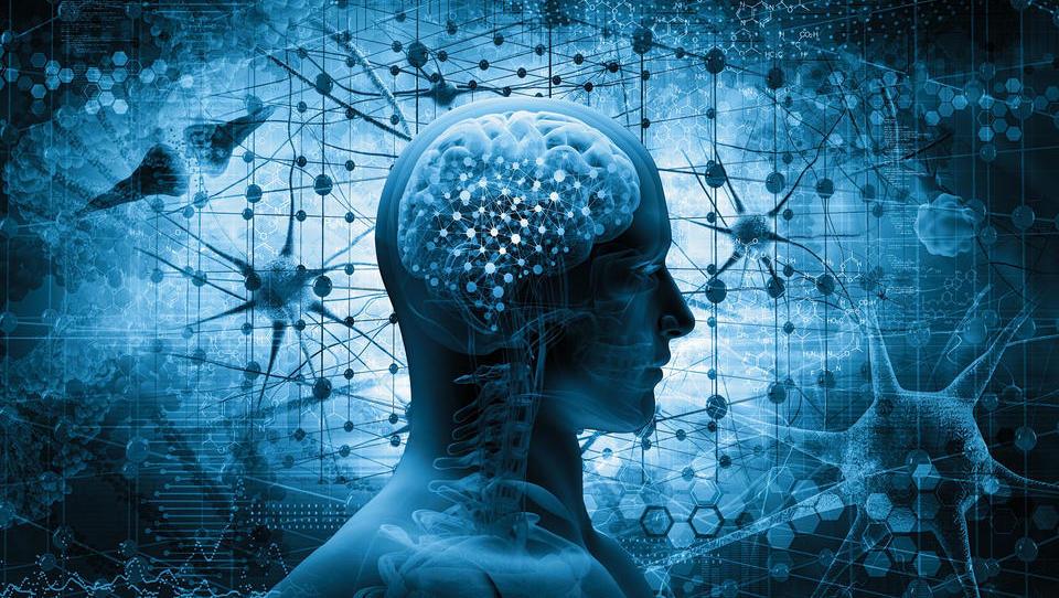 Nevrobiologija tveganja za izboljšanje poslovanja