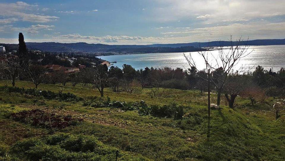 Kako do osem tisoč kvadratnih metrov zemlje v Portorožu