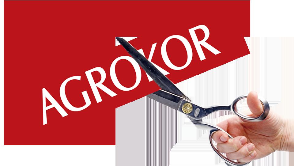 Tu je striženje in nova frizura Agrokorja