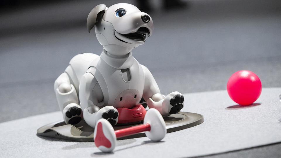 Humanoidni roboti, kot jih še ni bilo