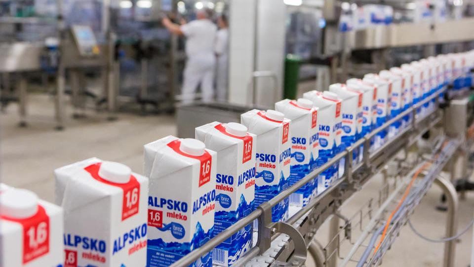 Ljubljanske mlekarne iščejo vodjo ključnih kupcev
