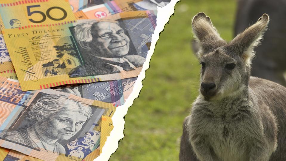 Avstralec letos podivjal. Vzemite brezplačnih 50 evrov in zajahajte njegovo rast