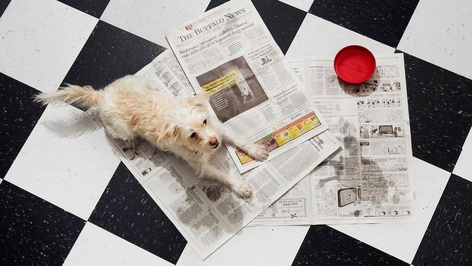 Kakšne načrte ima Wall Street s časopisi? Nič kaj prijazne