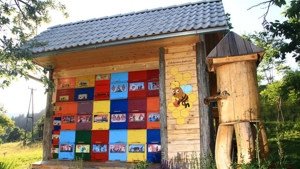 Dva milijona evrov za pomoč čebelarjem in več veterinarskih pregledov