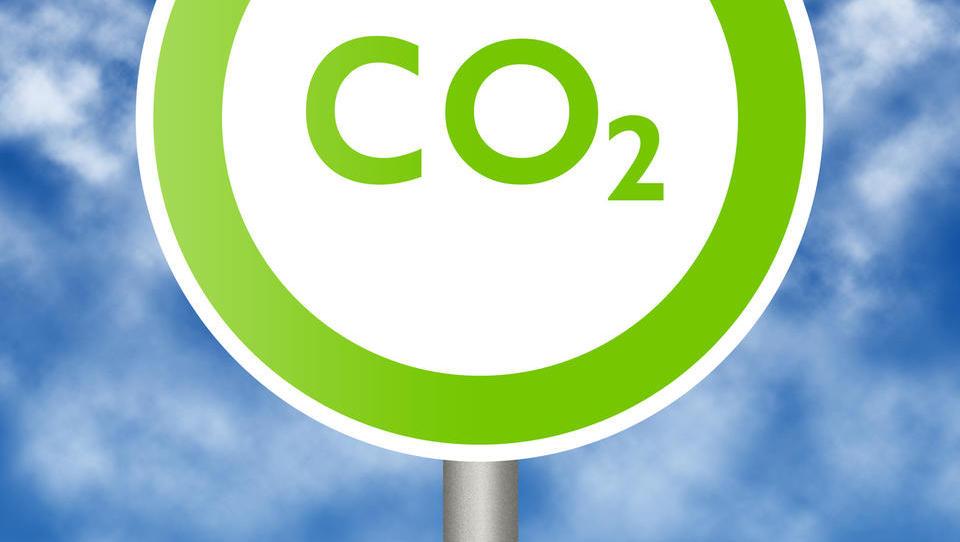 Manjša podjetja igrajo pomembno vlogo pri reševanju podnebne krize