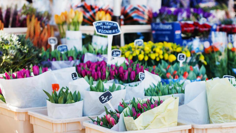 Kako je čez noč ovenela svetovna trgovina s cvetjem - in kako se s krizo borijo slovenski cvetličarji