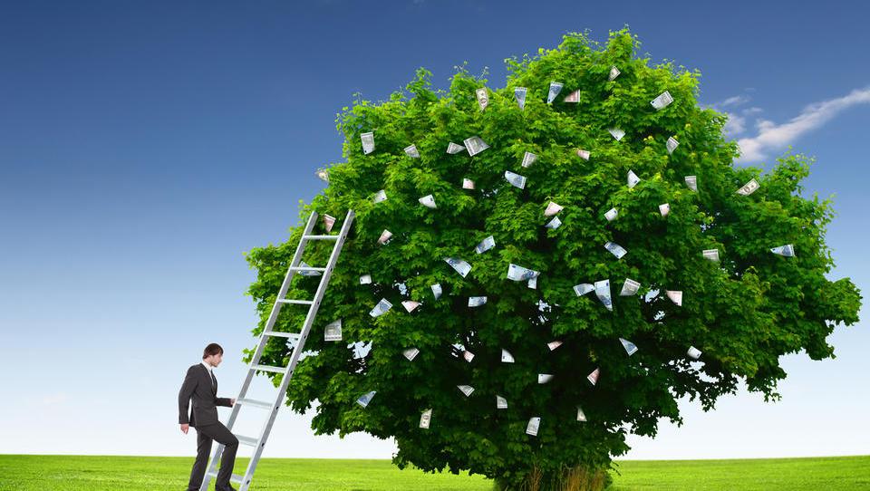 305 tisoč evrov na javnih razpisih za društva, zveze, združenja in sindikat kmetov
