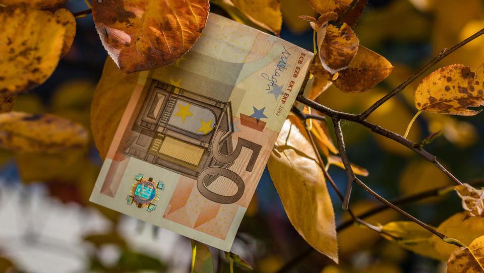 V teh občinah lahko jeseni še poberete denar