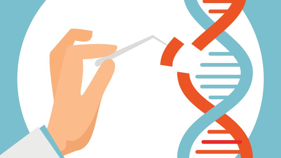 Cas9, onkološki terapevtski potencial