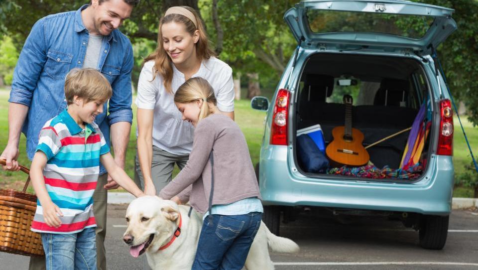 7 nasvetov, kako kupiti družinski avto