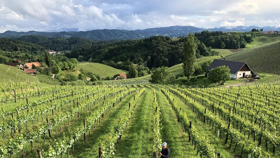 Povezovanje kmetijstva in turizma - Kako izkoristiti naziv Evropska gastronomska regija 2021?