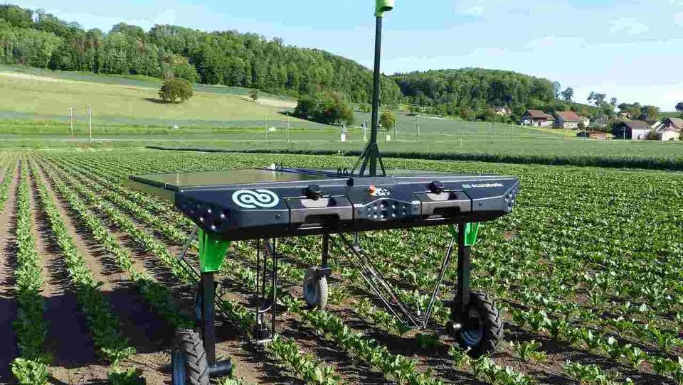Švicarji razvijajo robota, ki uničuje plevel