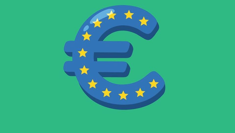 Zakaj evrsko območje ni po meri vseh?