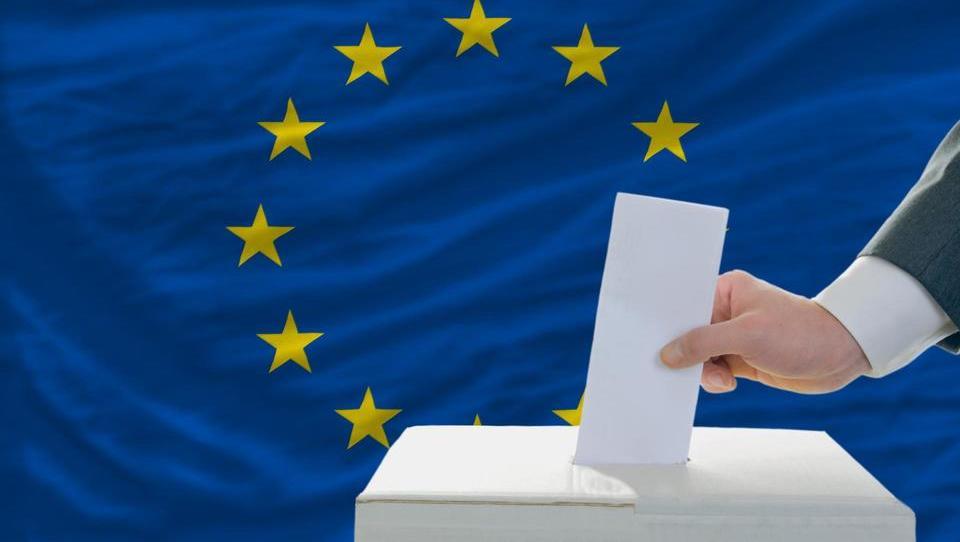 Zakaj bodo tokratne evropske volitve spremenile politično dinamiko EU