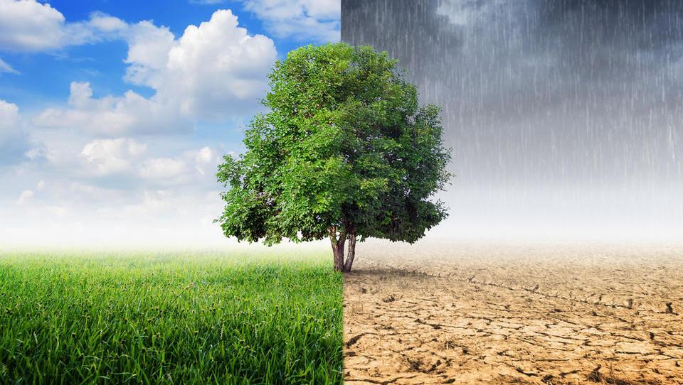 S predhodnim posvetovanjem do celovitega nacionalnega energetskega in podnebnega načrta