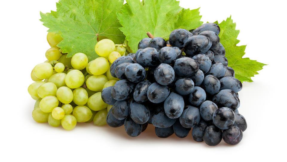 Zaradi koronavirusa bomo v Evropi jedli grozdje iz Čila, Peruja in Južne Afrike