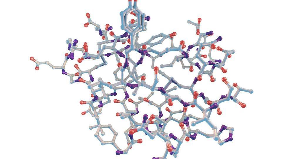 Renesansa postprandialne glukoze