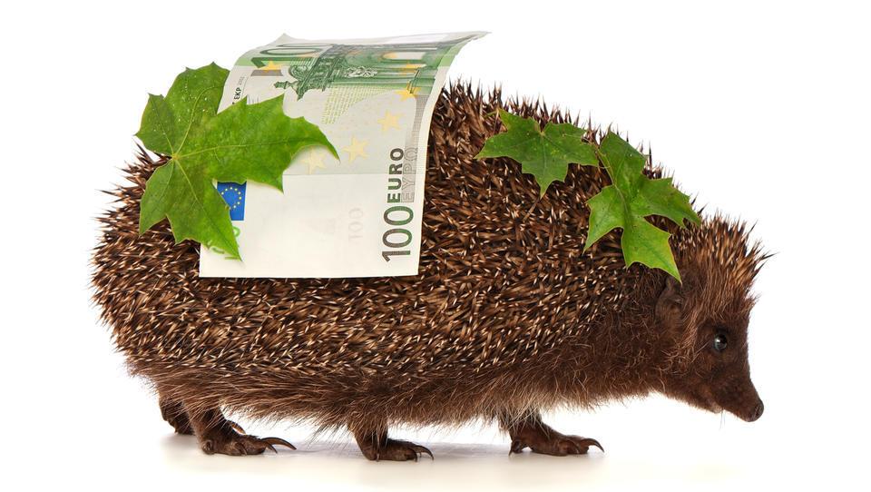Nova razpisa: 21,6 milijona evrov za sofinanciranje naložb v osnovna sredstva