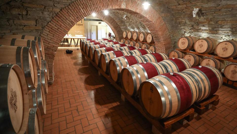 V gradu Dobrovo prenovili zgodovinsko vinsko klet
