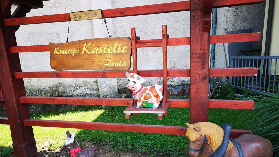 Kmetija Kastelic - Žonta bo prenovila sirarno