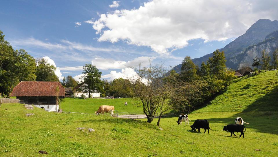 Načrt: za naložbe v turizem na podeželju 10 milijonov evrov subvencij
