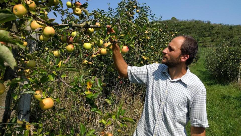 (video, foto) Je na kmetiji mogoče uporabiti množično financiranje? Poglejte v Jarenino!