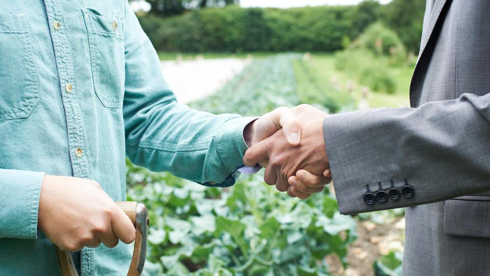 Razmišljate o povezovanju z drugimi kmeti in kmetijskimi organizacijami? Izkoristite finančna sredstva, ki jih ponuja ministrstvo