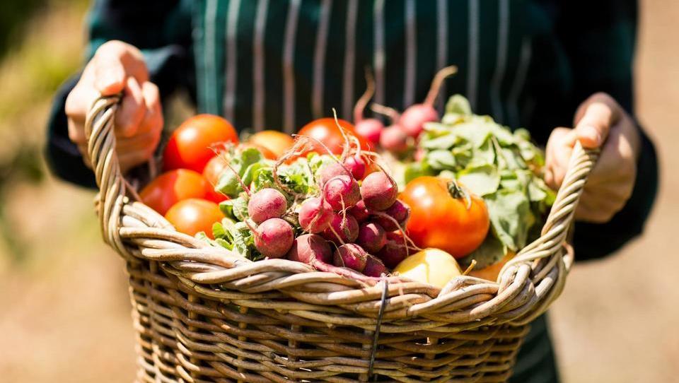 Še vedno jemo v glavnem uvoženo ekološko hrano
