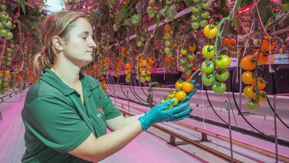 Nove tehnologije v kmetijstvu: kje so priložnosti?
