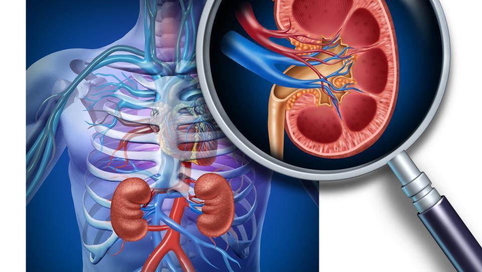 Cabozatinib presegel odpornost raka na ledvicah proti prvolinijski blokadi VEGF