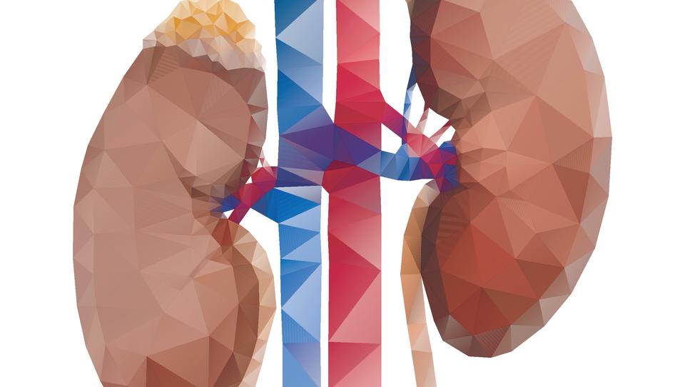 Kako daleč z empagliflozinom pri bolnikih z ledvično boleznijo?