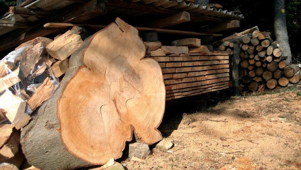 Na voljo so subvencije za predindustrijsko predelavo lesa