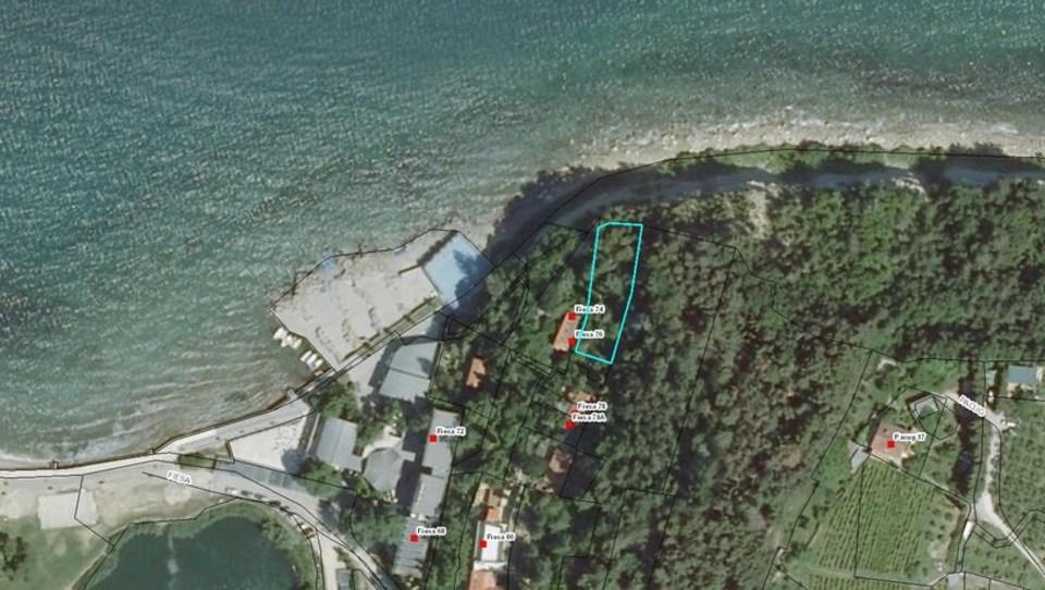 Bi kupili ''gozd'' Danila Slivnika v Fiesi? Obalna nepremičninarka: To je lahko dober nakup