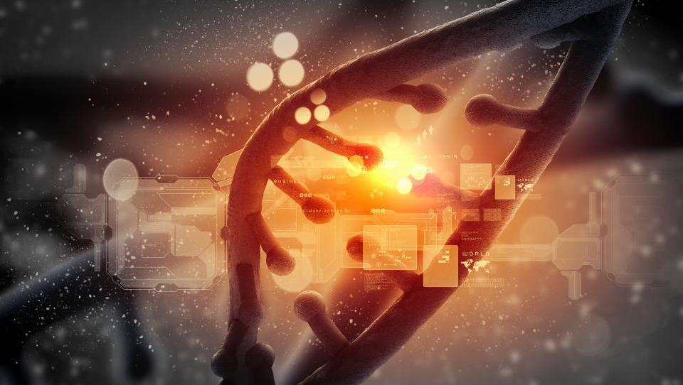 Mezenhimske matične celice v boj z ARDS?