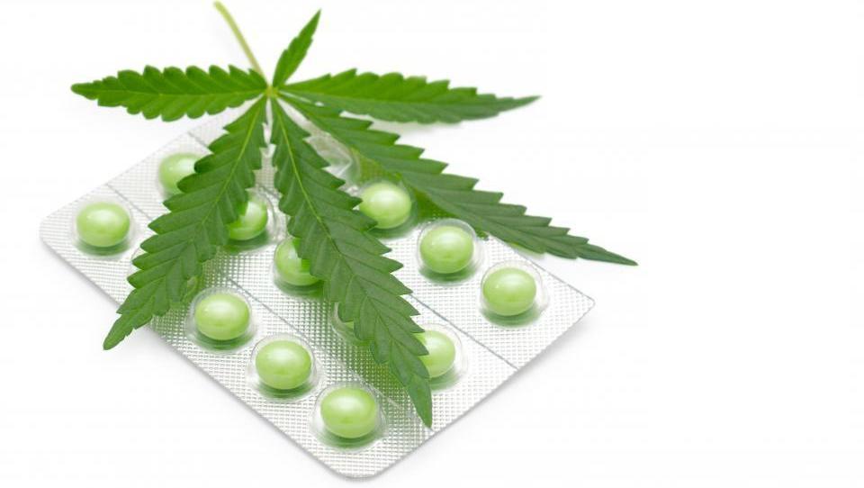 »Najučinkovitejša je kombinacija kanabinoidov«