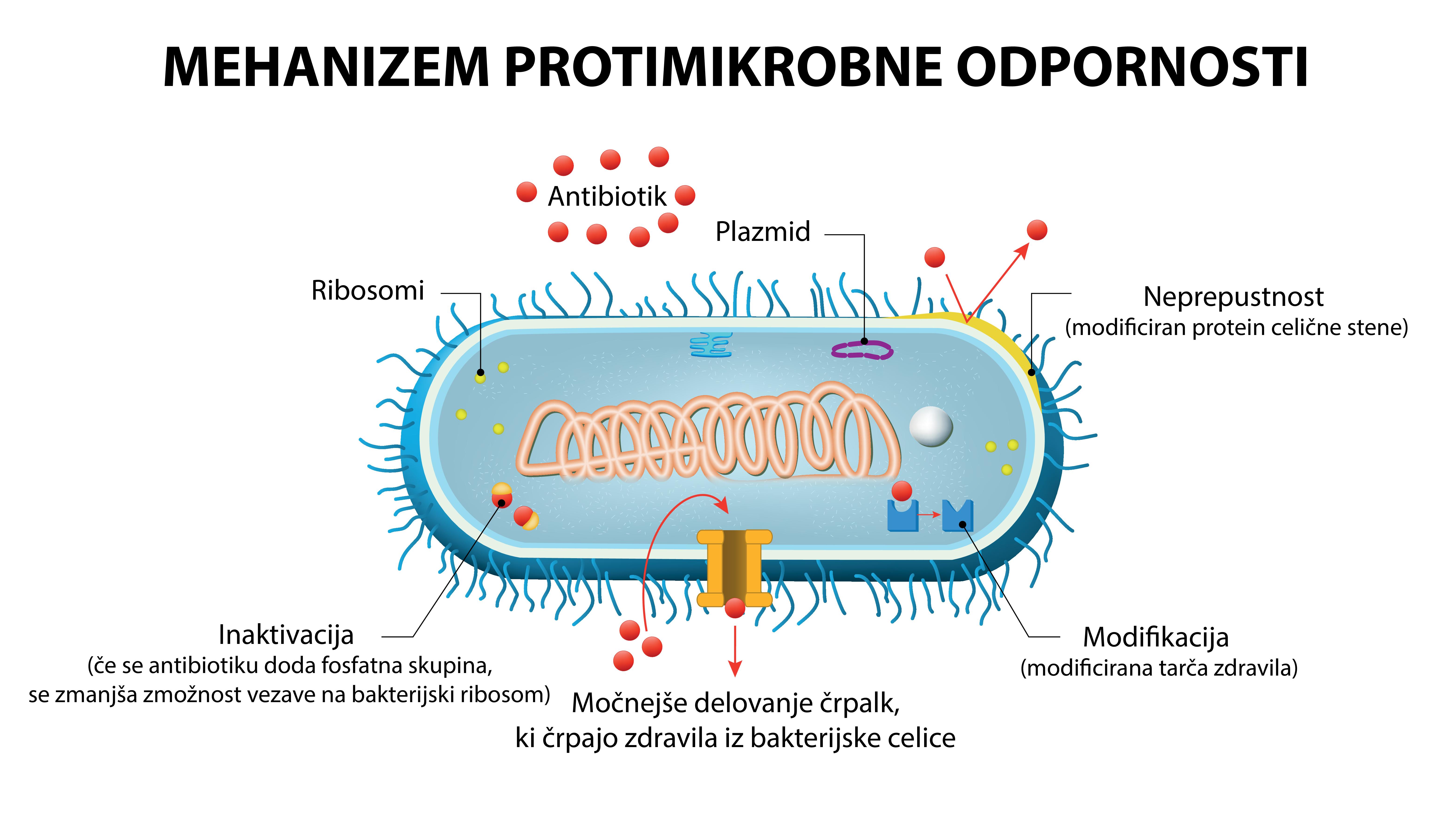 Ob elektronskem predpisu antibiotika tudi vpis diagnoze